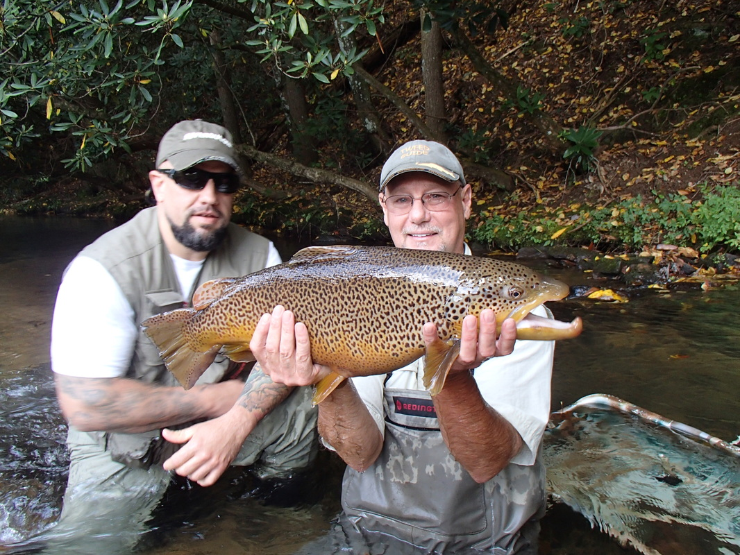 The valley at suches trophy trout flyfishing home for Fly fishing north georgia